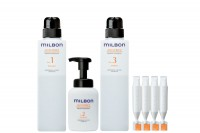 milbon ANTI-FRIZZ Salon Treatment