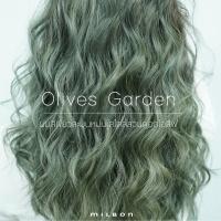 Olives Garden สีผมสวยโทนเขียวหม่น เปรียบดั่งความละมุนของสวนดอกโอลีฟ