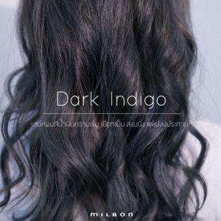 Dark Indigo เสน่ห์ผมสีน้ำเงินคราม ความงามที่ซ่อนเร้นแต่เปล่งประกาย