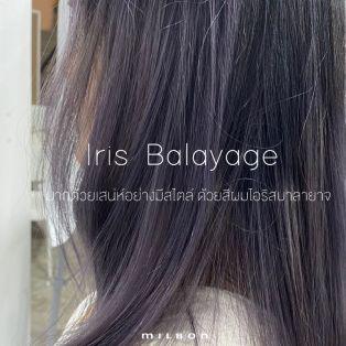 Iris Balayage  มากด้วยเสน่ห์อย่างมีสไตล์ ด้วยสีผมไอริสบาลายาจ