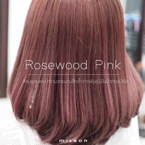 Rosewood Pink สีชมพูอมแดงดุจความงามอันล้ำลึกจากพันธุ์ไม้ในป่าทรอปิคอล