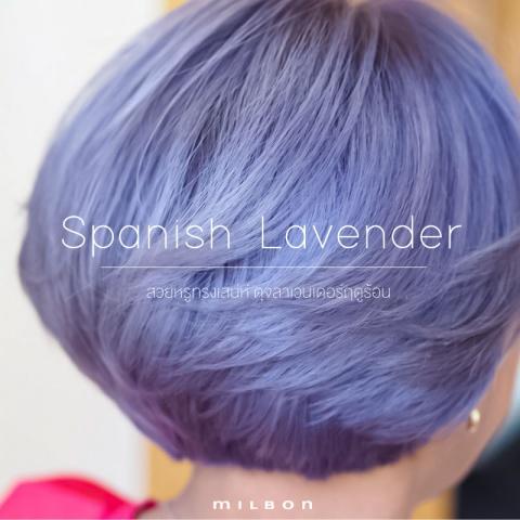 Spanish Lavender สวยหรูทรงเสน่ห์ ดุจลาเวนเดอร์ฤดูร้อน