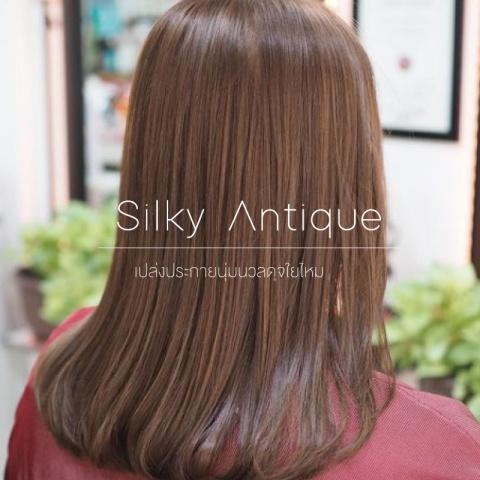 Silky Antique สีผมนุ่มนวลเปล่งประกายดุจไหม