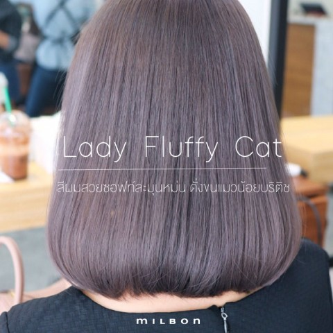 Lady Fluffy Cat สีผมสวยซอฟท์ละมุนหม่น ดั่งขนแมวน้อยบริติช