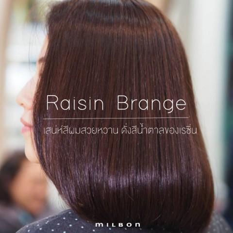 Raisin Brange เสน่ห์สีผมสวยหวาน ดั่งสีน้ำตาลของเรซิ่น