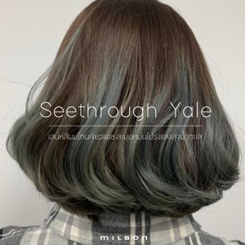 Seethrough Yale เสน่ห์สีผมโทนเขียวแอช ละมุนหม่นโปร่งแสงดุจน้ำทะเล